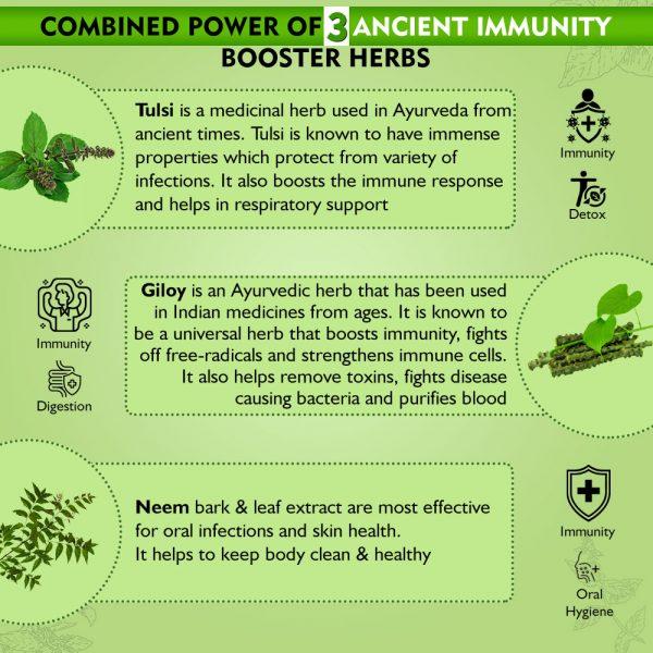 Tulsi Giloy Neem Spray immunity booster herbs